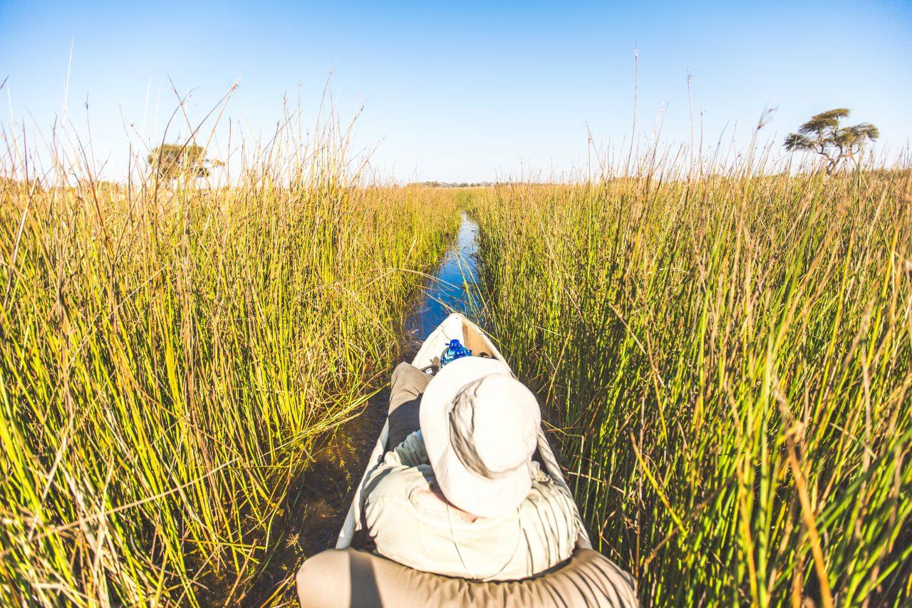 Okavango Delta-25